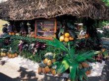 polynesian-immersion-poe.jpg