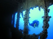 raiatea-activities-scuba-diving-wreck-no