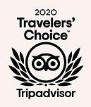 2020 TA award.jpg