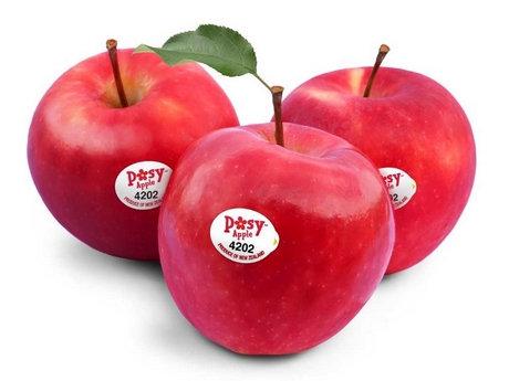 Apple NZ 500gm