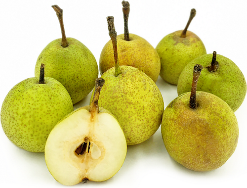 Indian Pear(Nashpati) 1kg