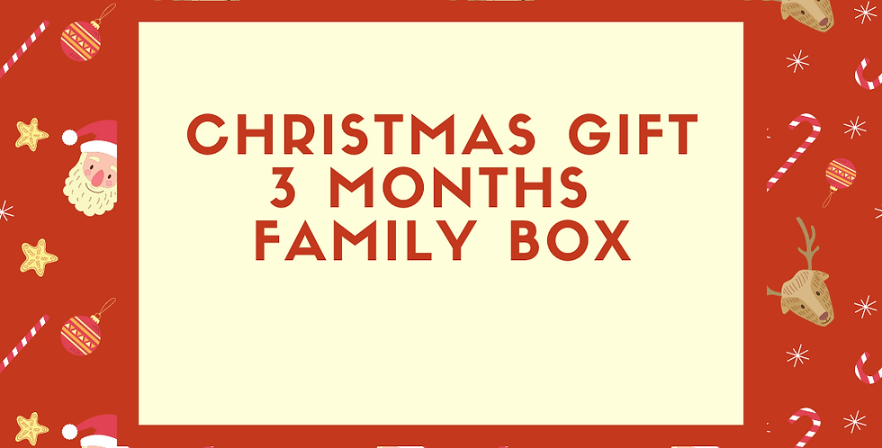 Christmas Gift 3 month family box