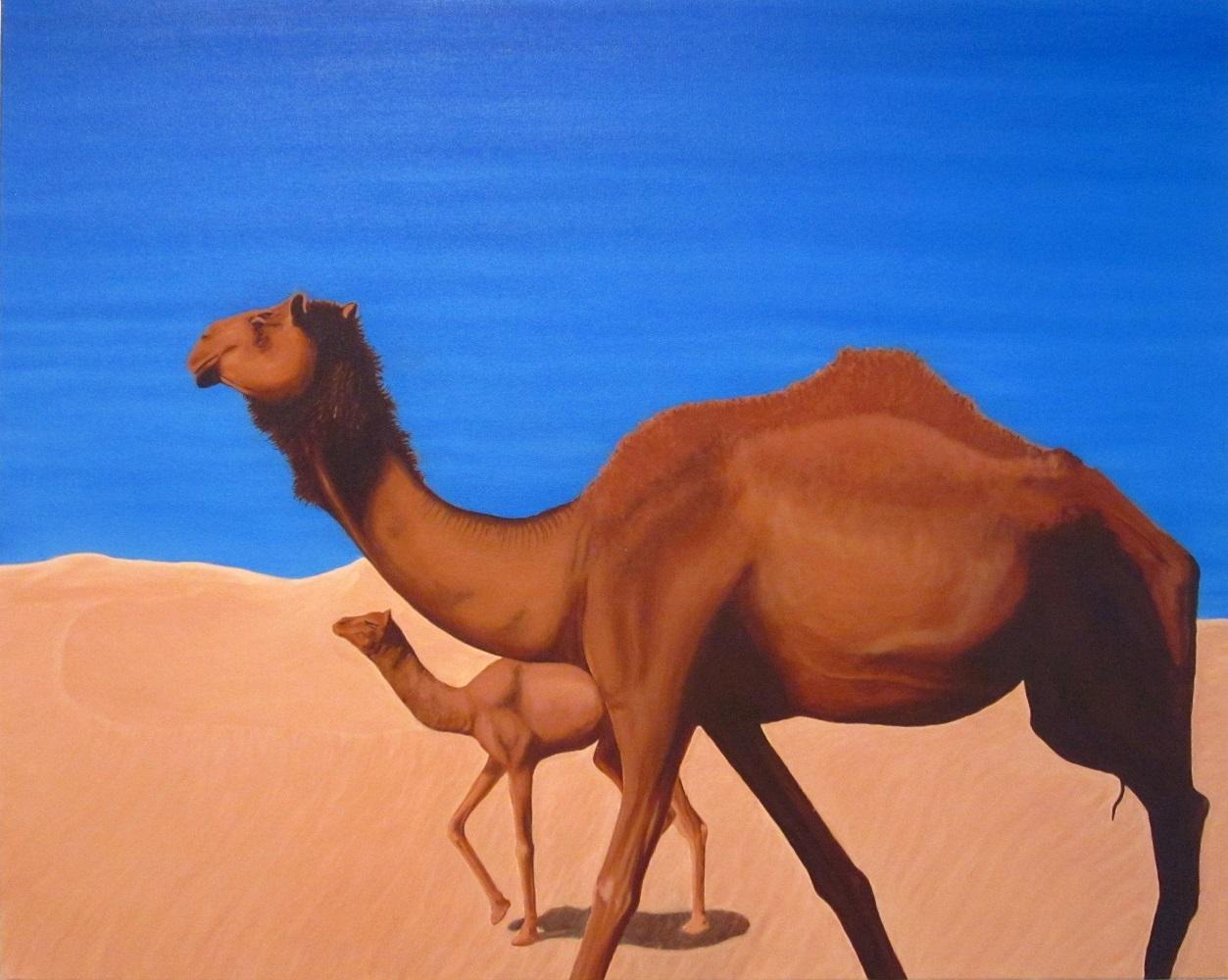 Camels (2013)