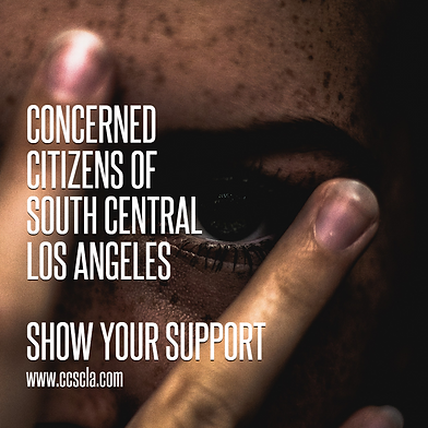 Ccscla-show-your-support-nonprofit-poste