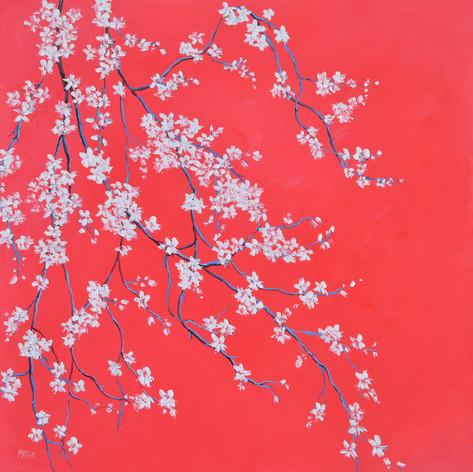 White Blossom on Scarlet