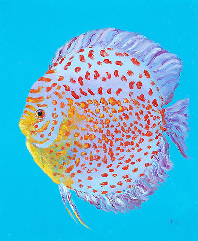 Discus fish painting by jan matson 2.jpg