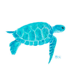 Turquoise marine turtle for bathroom wall decor