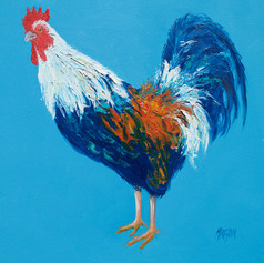 Rooster on blue
