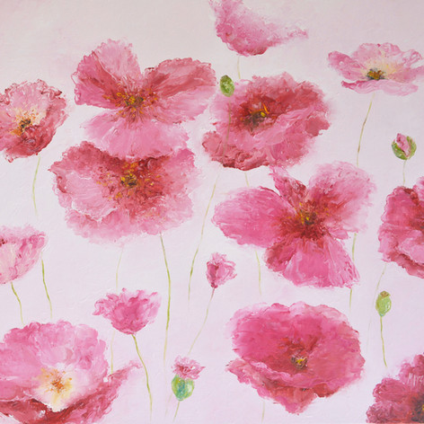 Pink Iceland Poppies