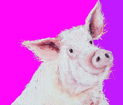Pig painting on pink and purple backgrou