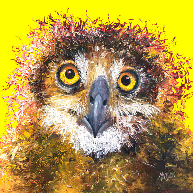 Owl painting on yellow