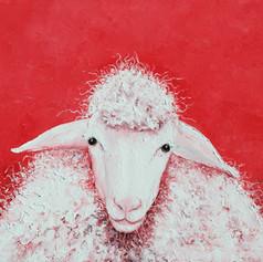 Woolly Sheep, Gabriel