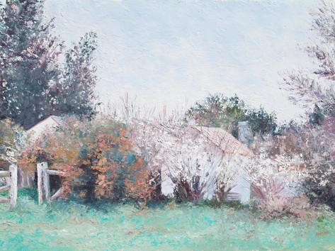 Braidwood in Spring