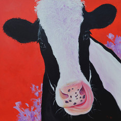 MooMoo the Cow