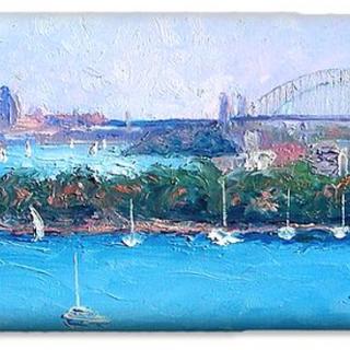 Sydney Harbour Phone Case