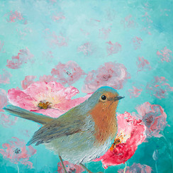 Robin in field of poppies