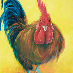 Rooster - Winston