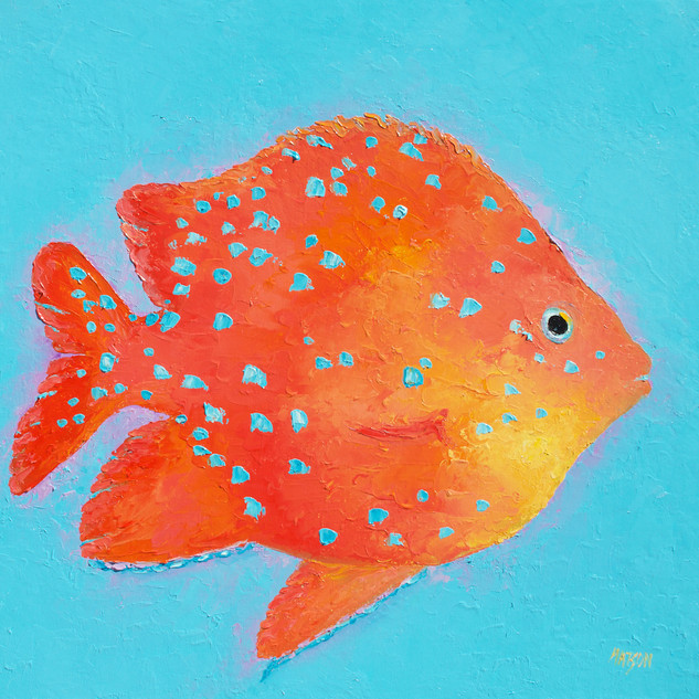 Orange tropical fish