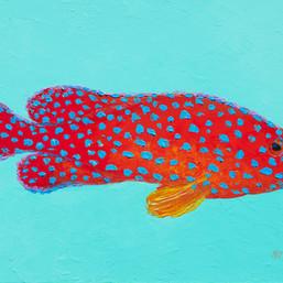 Grouper Fish painting by Jan Matson.jpg