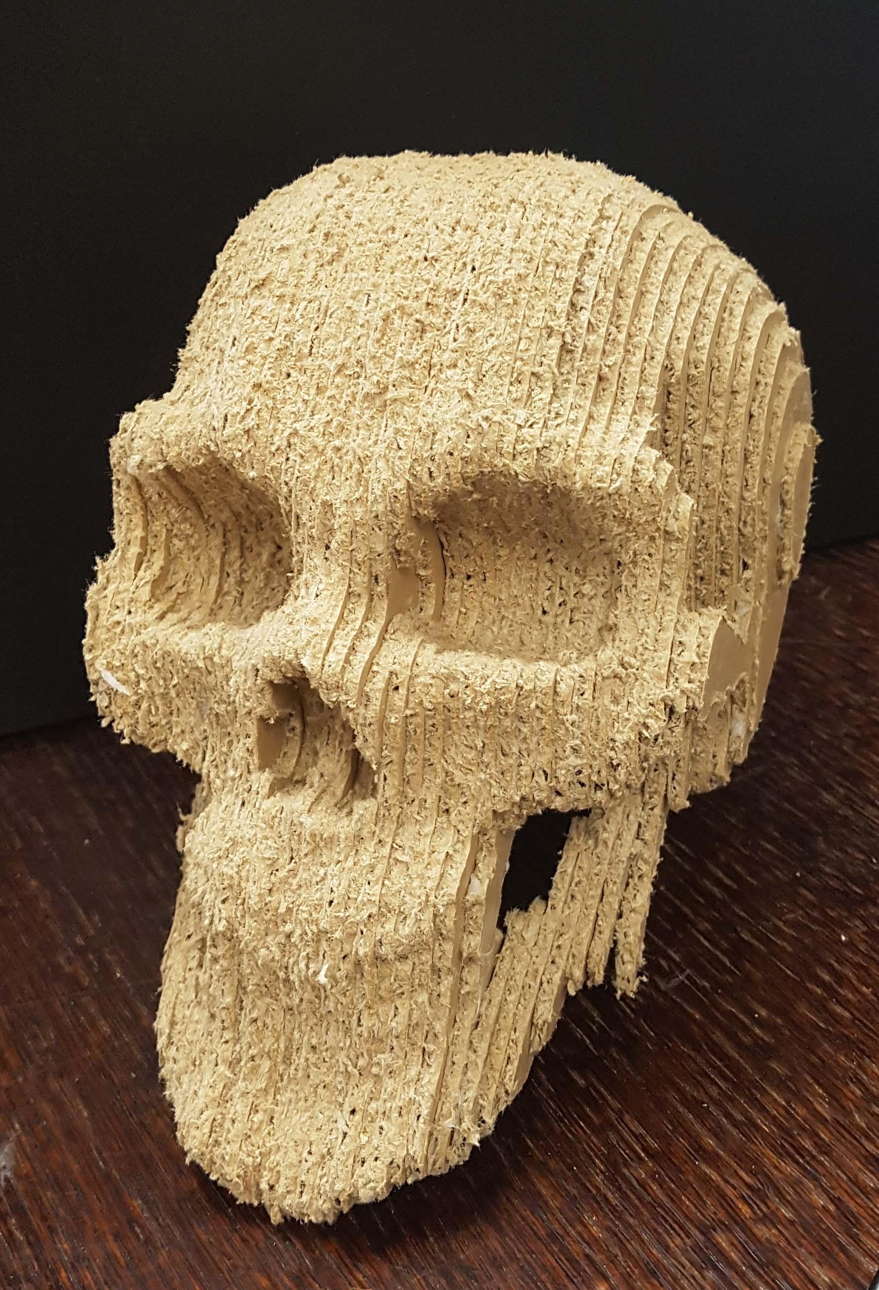 Card board skull
