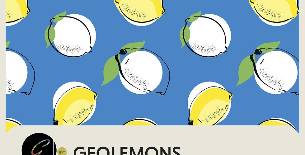 GEOLEMONS - PATTERN + SPOT GRAPHICS