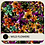 Thumbnail: WILD FLOWERS :  DIGITAL PATTERN + SPOT GRAPHIC