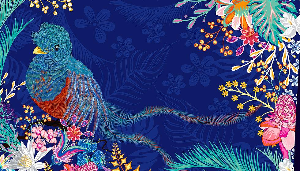 wix portada quetzal.jpg