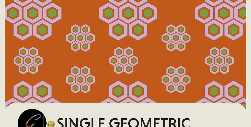 SINGLE GEOMETRIC - PATTERN
