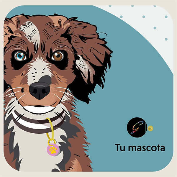 TU MASCOTA -02.jpg