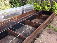 Larch timber sleepers make raised beds