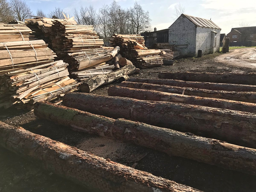 Larch logs at Cottenham Sawmills