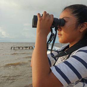 Abrazar nuestro cielo. Capacitaciones de monitoreo de aves en Campeche. Día de las Aves Migratorias