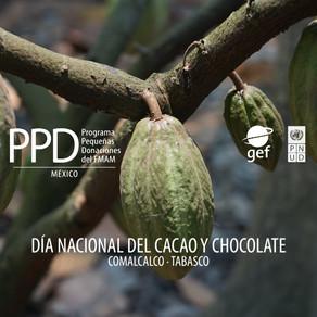 Celebrando el alimento de los dioses. Día Nacional del Cacao y Chocolate