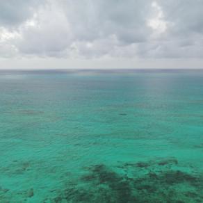 Día Mundial de los Océanos: Cambios y amenazas