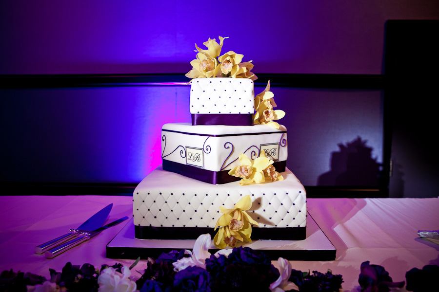 Cake Spot Lighting