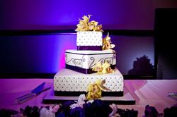 Cake Spot Lighting