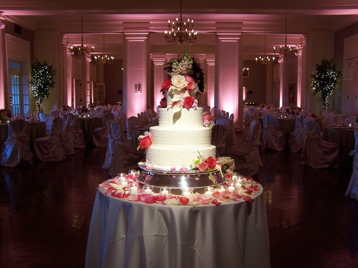 Cake Spot Lighting.jpg