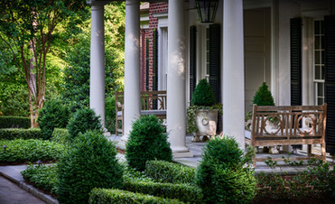 architectural boxwood hedges at front entrance