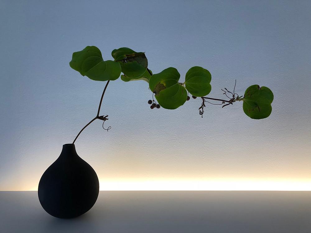 光の床の間レシピ その1 Photo by Hiroyasu Shoji
