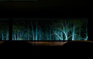 光のソムリエ「夜の森を視る照明」-奥定山渓温泉 佳松御苑 客室からの景色