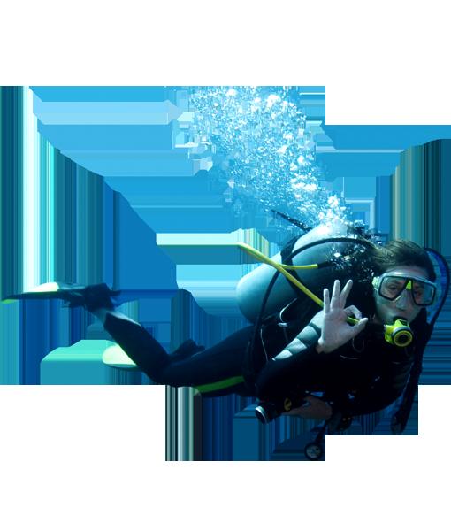 diver_PNG27.png