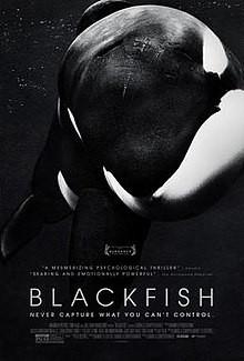 220px-BLACKFISH_Film_Poster-2.jpg