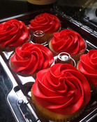 Will you accept this rose {CUPCAKE}__ 🌹