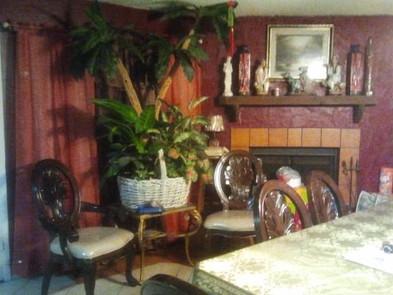 tuesday tip: decor (do you think those are fake?!)