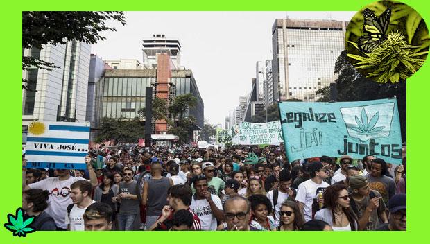marcha da maconha_marihuana_sp2_ok