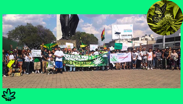 marcha da maconha_marihuana_guadalajara-mexico-ok
