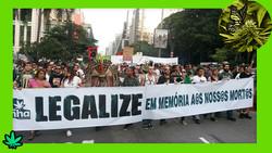 marcha da maconha_marihuana_sp_ok