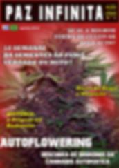seed auto - cannabis autoflowering