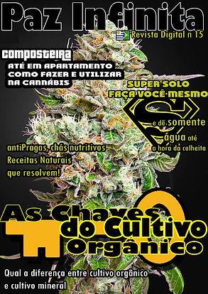capa15.jpg