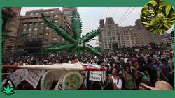 marcha da maconha_marihuana_df-mexico-ok